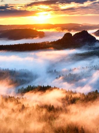 Landscape in water mirror. Misty mountains awakening in beautiful park. Peaks of hills in valley full of mist after heavy rain