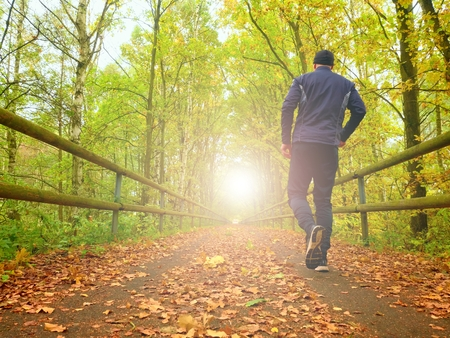 profesional: Flare reflection. Sportsman in black sortswear run on road. The man is Slowly running on asphalt way covered by autumn leaves. Pathway in the park, Beeches and Maples leaves.