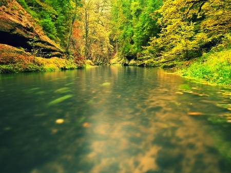 Fall season at Mountain River. Green algae in water, colorful autumn leaves. Mossy boulders on river banks. Autumn colors. Stock Photo