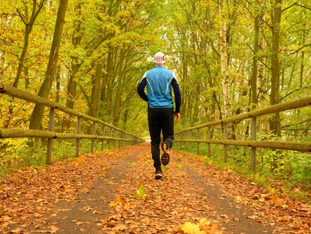 run way: Sportsman in blue t-shirt and black trousers run on road. The man is Slowly running on asphalt way covered by autumn leaves. Pathway in the park, Beeches and Maples leaves.