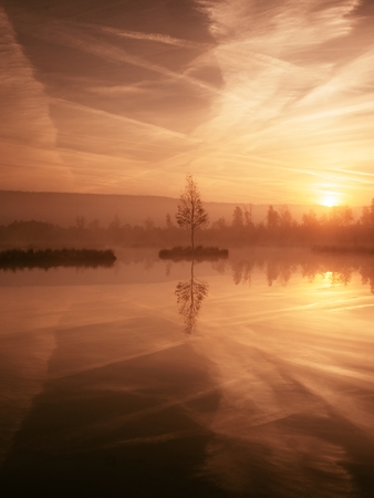 swampy: Swampy mountain  lake with mirrored  water level in mysterious forest, abandoned birch tree on island in middle. Fairy misty weather, autumnal colors. Stock Photo