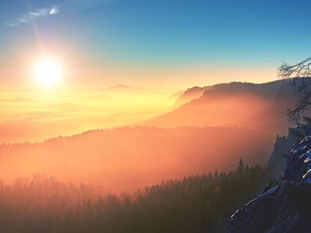 marvelous: Marvelous daybreak above valley full of colorful mist. Peaks of high trees are sticking up to sky. Romantic autumn.
