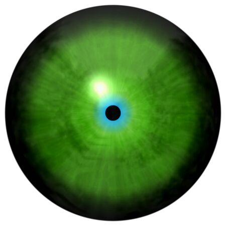 stripped: Isolated green eye. Illustration of green stripped 3D eye iris, light reflection