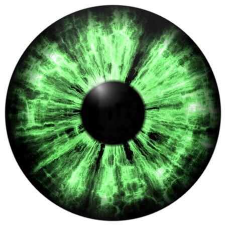 Isolated green eye. Illustration of green stripped 3D eye iris, light reflection