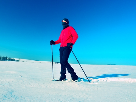 Tourist with snowshoes walk in snowy drift. Sunny freeze weather. Hiker in pink sports jacket and black trekking trousers snowshoeing in powder snow. Stock Photo
