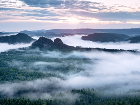 Blue  mist in mountains. Summer forest after heavy rainy night. Treetops increased from fog and stripping inversion. Vivid effect