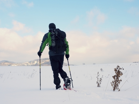 Man with snowshoes walk in snowy filed. Hiker in green gray winter jacket and black trousers trekking snowshoeing in powder snow. Sunny winter day, gentle wind Brings small snow flakes Stock Photo
