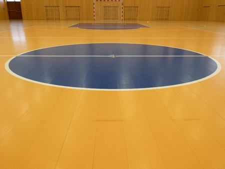discontinuous: Basketball court inside. White lines and blue playfield in hall. Hanball gate at wall. Painted wooden floor of sports hall with colorful marking lines. Schooll gym hall