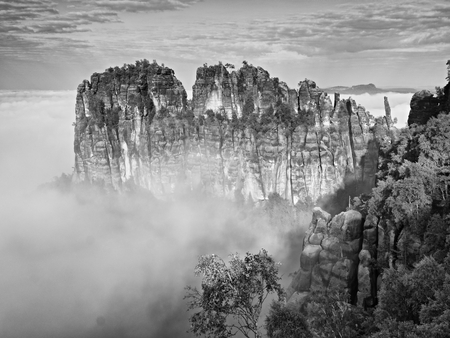 Misty Valley, sharp rocks gentle creamy fog cut it strips. Long deep valley full of fresh spring mist. Dreamy landscape
