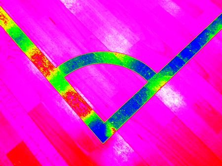 Animal view. Infrared scan of empty gym playground, light wooden  floor on ground with bounds lines.