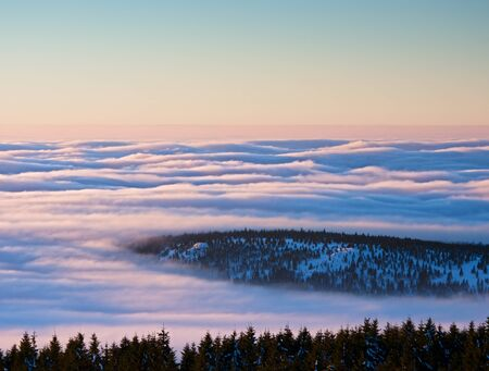 shinning: Inverse weather in mountains, shinning fog. Misty valley in winter mountains. Peaks of  mountains above creamy mist.