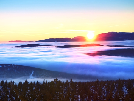 inverse: Inverse weather in mountains, shinning fog. Misty valley in winter mountains. Peaks of  mountains above creamy mist.