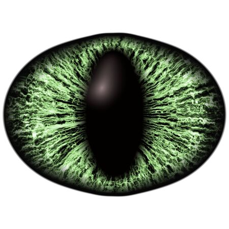 Strange green eye of feline animal with colored iris. Detail view into isolated predator eye bulb Stock Photo