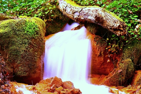 iron oxide: Cascades in rapid stream of mineral water. Red ferric sediments on big boulders between ferns