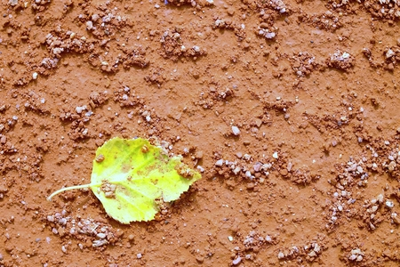 end of the trail: Detail of dry leaf on tennis court. Dry light red crushed bricks surface on outdoor tennis ground. End of season.