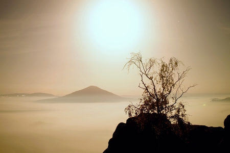 The island with tree. Full moon night in a beautiful mountain. Sandstone peaks and hills Increased from foggy background, the fog is orange