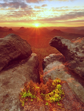 Morning view over crack sandstone edge into forest valley, daybreak Sun at horizon. Hike in natural park. Image is filtered