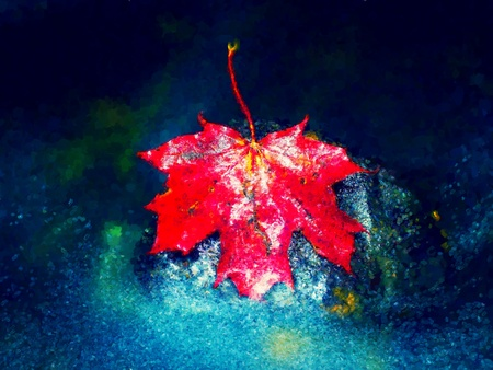Oil painting, brush strokes. Red autumnal  maple leaf in water. Dried leaf caught on mossy stone in cold water of mountain stream Stockfoto