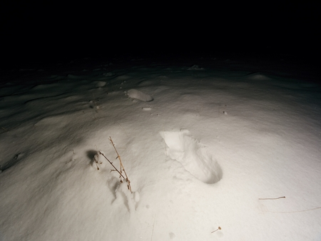 Searching of person disappeared in the winter landscape. The dim light of the headlights illuminates human footprints in deep snow.