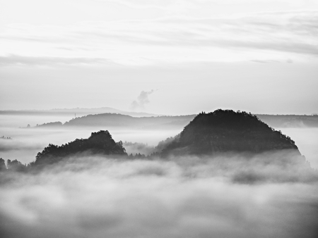 View into deep misty valley in Saxony Switzerland, Germany. Sandstone peaks and rocky hills sticking up from thick fog. Black and white picture.  Stock Photo