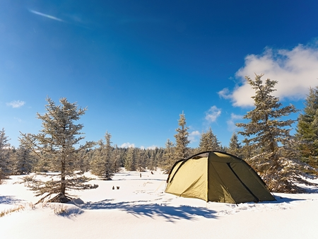 Winter camping on snow in the forest. Green tent hidden between trees. Blue sky. Stock Photo