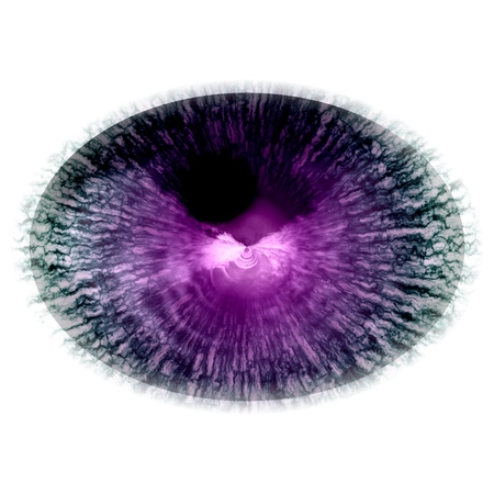 Isolated elliptic animal blue eye in RTG picture. The eye with large pupil and bright retina. Shinning iris around pupil detail view into eye bulb