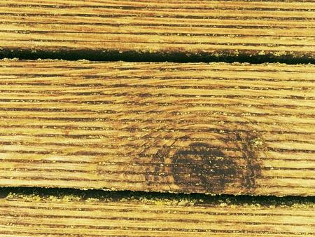 Old mossy wooden boards,  outside  terrace. Surface treatment of hardwood planks Reklamní fotografie