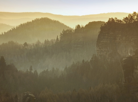 Autumn landscape. Colorful morning  fog above hilly landscape.  Misty view into beautiful valley of Saxony Switzerland.