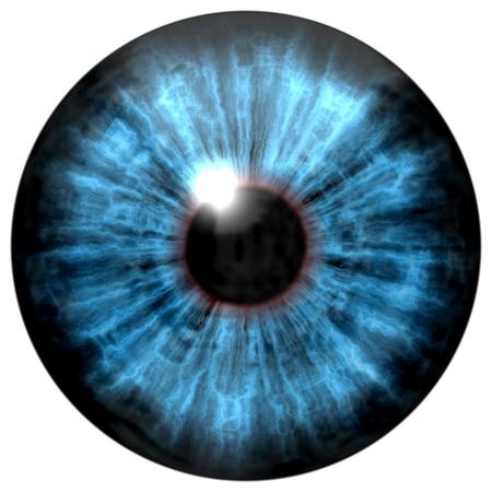 Blue human eye on a white background. L Banco de Imagens