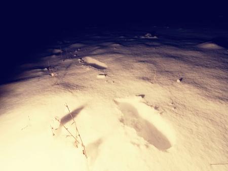 Footprints on fresh snow by night vanishing in the dark. Fear in darkness
