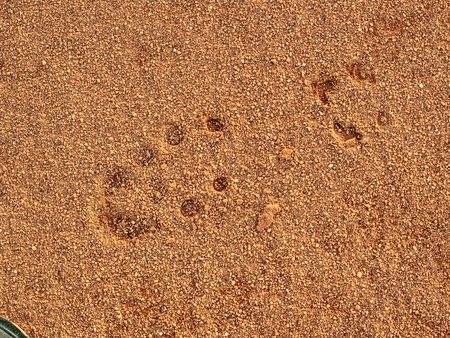 Footballer shoes footmark in the sports court surface.  Footprints and service marks on a outside tennis court details