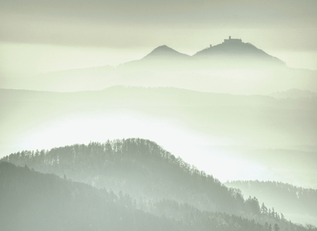 Fantastic hilly landscape with high humidity in the air. Mountain forest in clouds landscape. Foggy countryside Imagens
