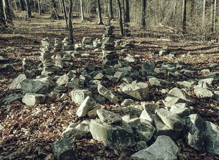 Area in the forest covered with many mysterious piles of stones in autumn.