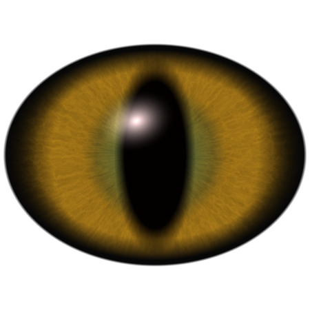 Brown eye isolated on background. Deep colors of unhuman eyes.