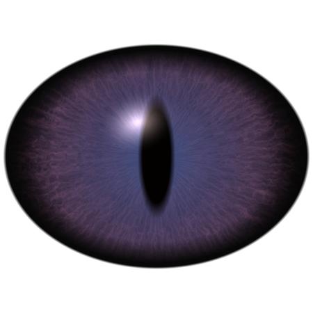 Strange un-human eye with shin pupil and dark retina. Slim iris around pupil detail view into eye bulb