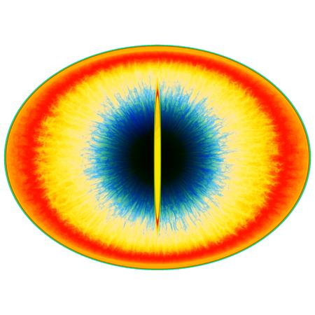 Rentgen photo. Isolated elliptic animal eye with large pupil and bright retina 스톡 콘텐츠 - 117811207
