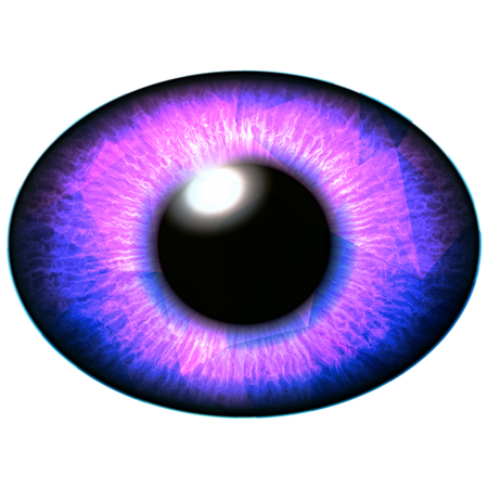 Red purple eye illustration, shapes in colorful iris. Shinning iris around pupil detail view into eye bulb