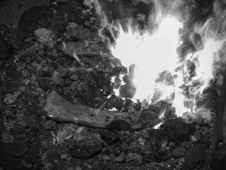 Heating of horse hooves in small forge. Farrier hold in pliers red hoof between hot coals.