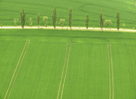 Aerial shot of field with a tractor strips and agricultural way. Fresh green field in  landscape Stok Fotoğraf