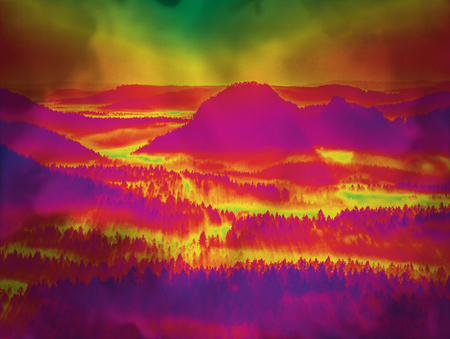Fantasy effected landscape with trees in a forest and rounded hills.  Grunge background in amazing thermography colors.