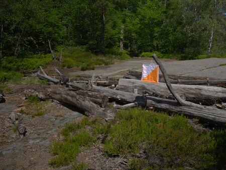 Piste orientale dans une belle zone rocheuse dans une forêt profonde. Bannière de point de contrôle typique.