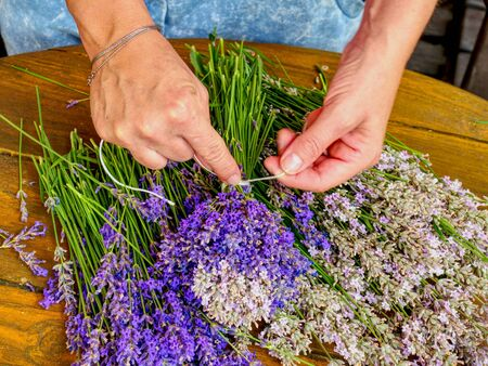 Many Purple levander flower on old wooden table. Beautiful lavender flower from my flower garden