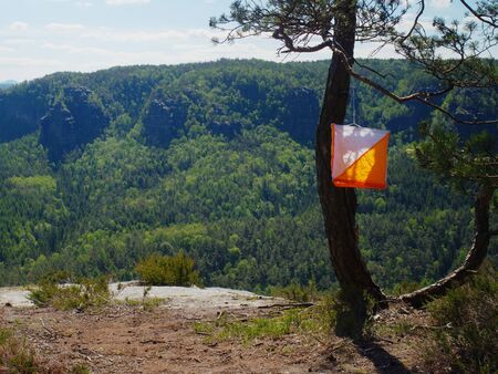 White orange flag marks point for orienteering run hangs on tree in difficult forest and rocky terrain in sandstone rocky park.