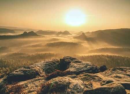 Collines rocheuses au lever du soleil. Paysage à couper le souffle des rochers du désert du matin