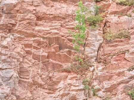 Ancient multi-layered lime and feric lines in wall surface of mine rocks