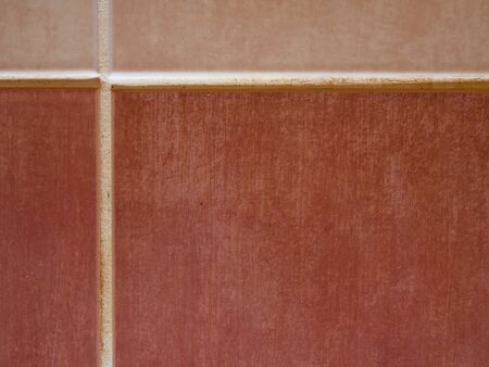 Red brown tiles with natural grouts. Slippery floor in bathroom or kitchen. Nice example