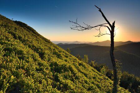 Bear rocks sunrise during autumn with rocky landscape. Popular trail in sandstone rocks. Rounded summit boulde Stok Fotoğraf