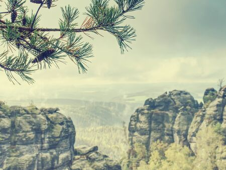 Amanecer brumoso pesado. Amanecer brumoso en hermosas colinas. Los picos de las colinas sobresalen del fondo brumoso