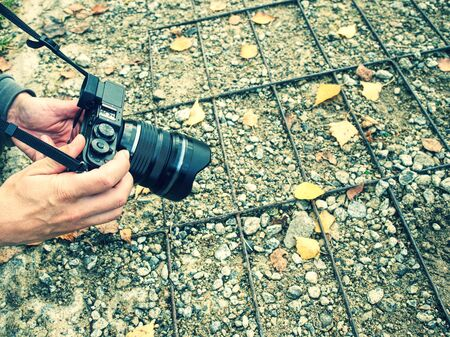 Woman taking pictures with a mirrorless camera in forest in the fall season. Some colorful leaves fallen on the ground in front of camera lens Banque d'images