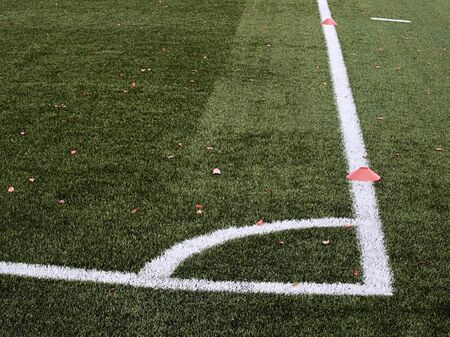 Playground, plastic grass at end of footbal season with first colorful leaves